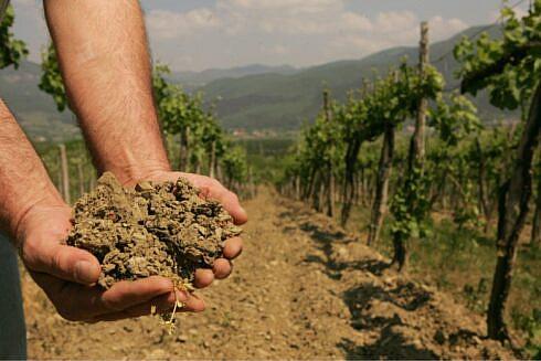 alianta-pentru-agricultura-si-cooperare.-solutiile-propuse-pentru-acordarea-despagubirilor-fermierilor-calamitati-de-seceta-severa-din-2020